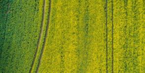 fiscalité agricole